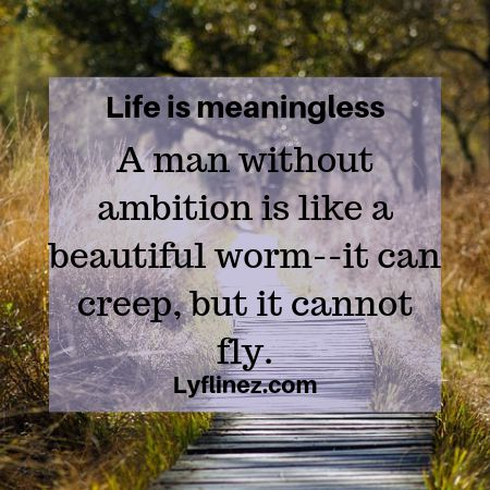 Life is meaningless- ambition is important for life