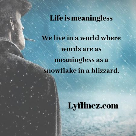 life is meaningless-words are meaningless in this world
